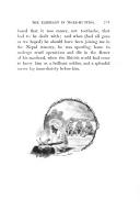 Página 235